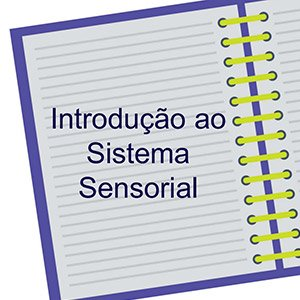 Introdução ao Sistema Sensorial