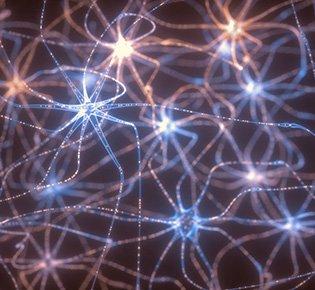Neurociência dos Movimentos