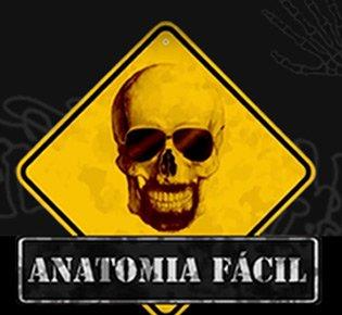 O canal Anatomia Fácil é o maior canal de vídeo aulas de Anatomia Humana do Brasil