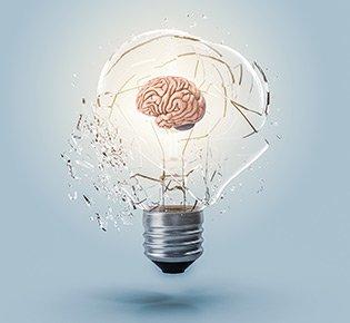 O que há de especial no cérebro humano?