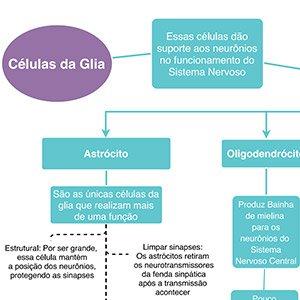Mapa Mental Célula da Glia