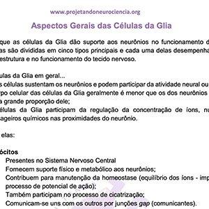 Aspectos Gerais das Células da Glia