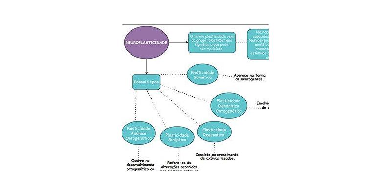 Mapa Mental Neuroplasticidade